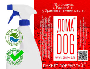 ДОМА-КОТ doma-dog-300x231 doma-dog